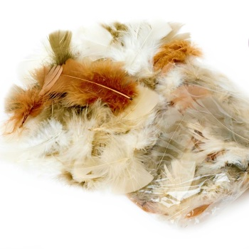 200+ Assorted Natural Feathers (25g)