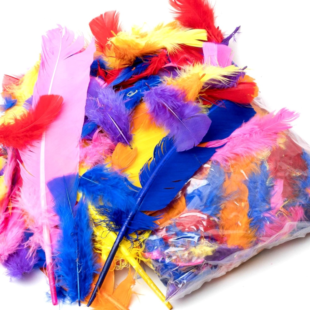 200+ Assorted Colour Feathers (25g)