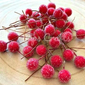 Red Frosted Berries On A Wire Stem
