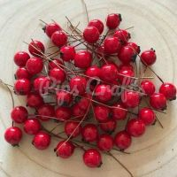 Red Shiny Berries On A Wire Stem