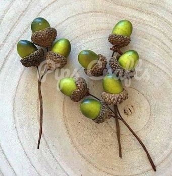 Green Acorns On A Wire Stem