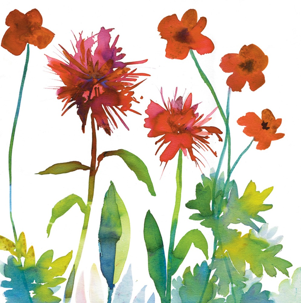 Poppies and Bergamot Greetings Card