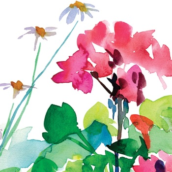 Geraniums and Daisies Greetings Card