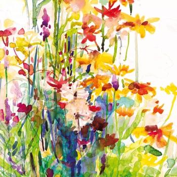 Alliums in August Greetings Card