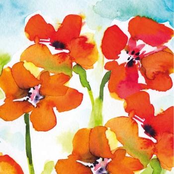 Nasturtiums Greetings Card