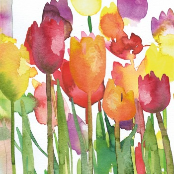 Spring Tulips Greetings Card