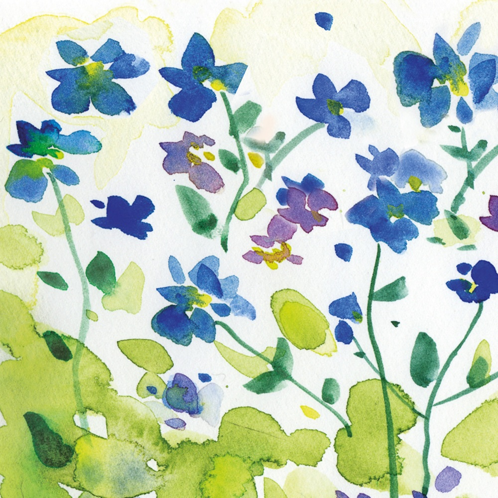 Forget-me-not Greetings Card