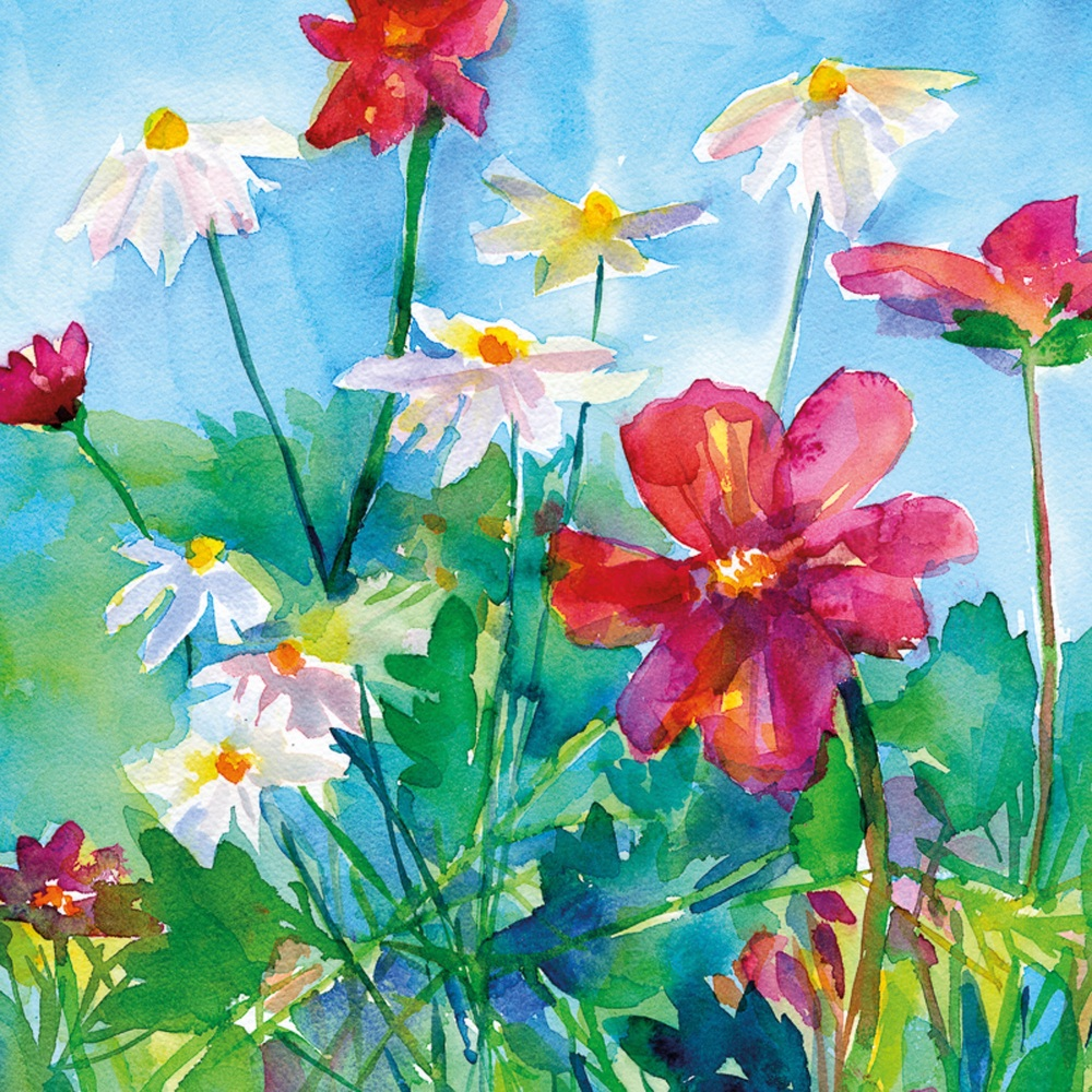Daisies and Anemones Greetings Card