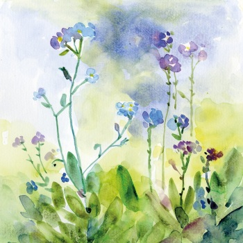 Woodland Forget-me-nots Greetings Card