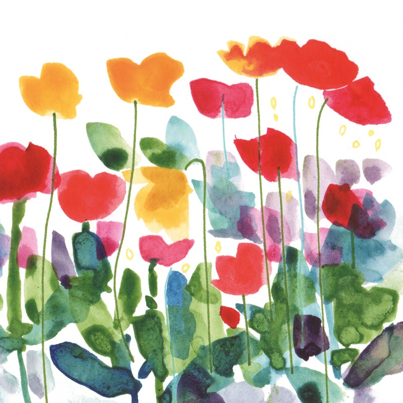 Fresh Poppies Greetings Card