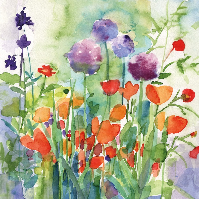 Alliums and poppies Greetings Card