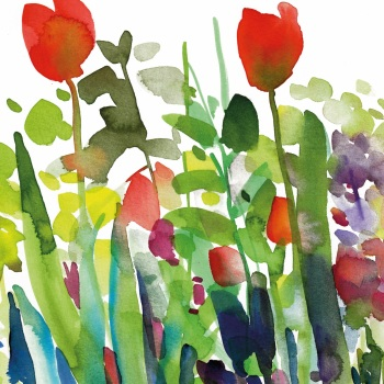 Red Tulips Greetings Card