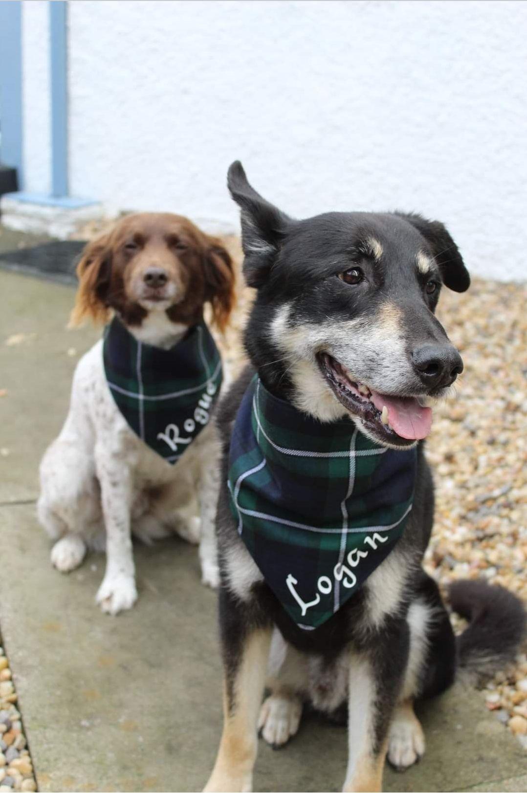 Personalised tartan wedding dog bandanas