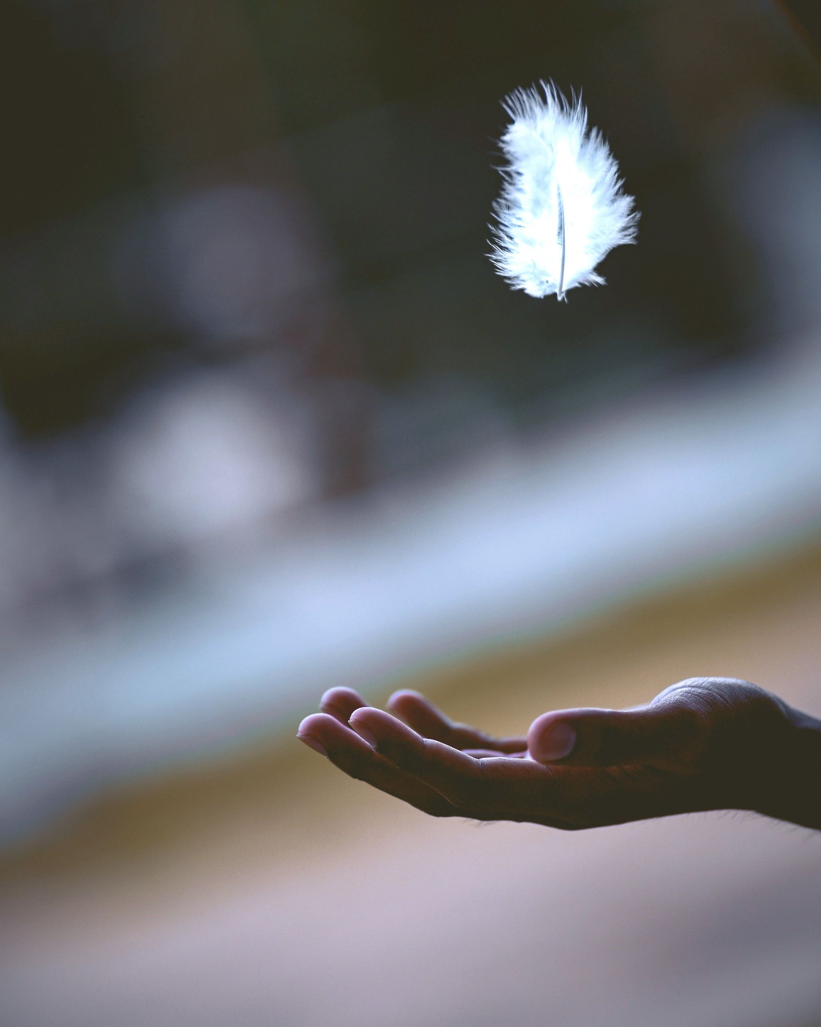 Close up of a white feather floating above a man's hand