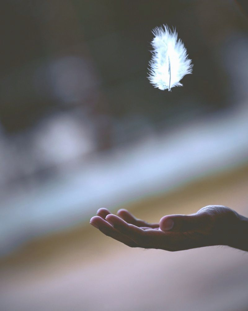 Being present - A white feather floating above a man's hand