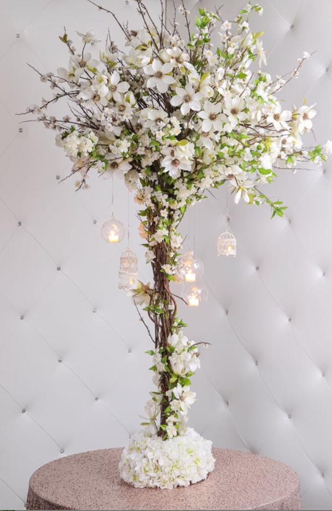Blossom tree 5ft