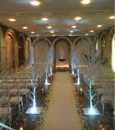 White Birch trees / Aisle deoration