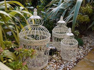 Bird Cages & Birdcages stands