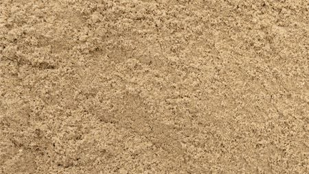 Horse Excise Sand