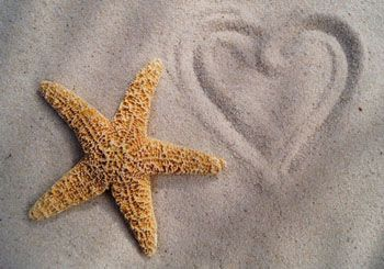 A starfish on sand, with a heart drawn into the sand next to it.