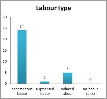 1-30 labour type