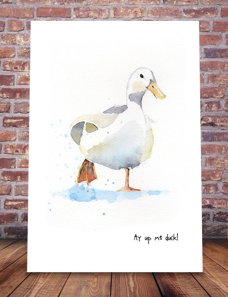 Ay up me duck!