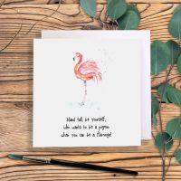 Flamingo pigeon