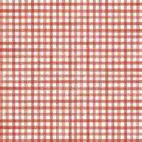 Riley Blake - Beautiful Day 100% Cotton Fabric - Geranium Gingham