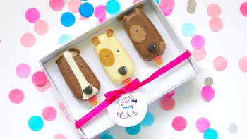 Dog popsicle gift set