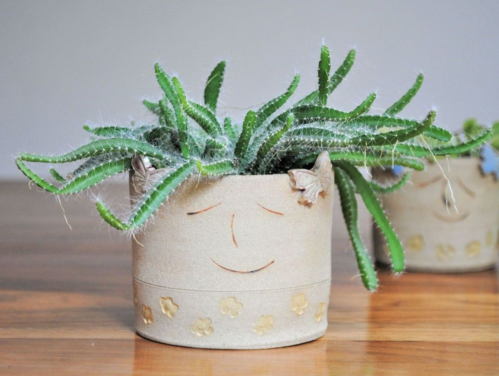 Handmade plant pot with smiley face.