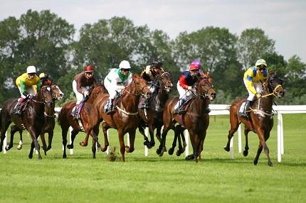 horse racing menu