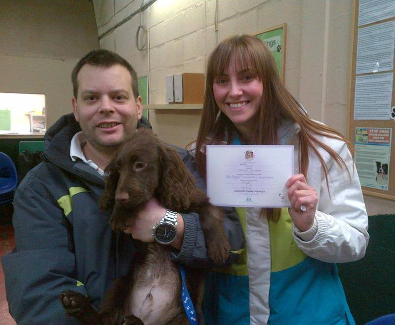 Puppy Foundation Certificate
