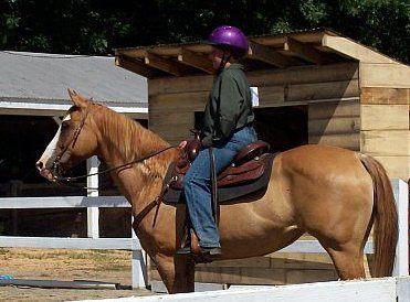 Soleil Kerstin Mon horse show july 08