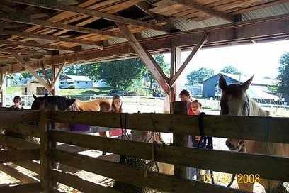 Mon fair show barn