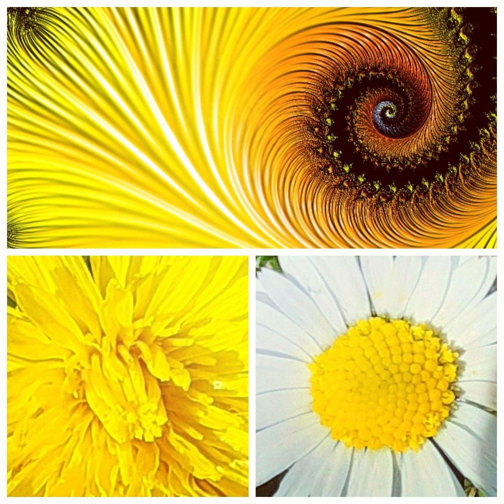 Dandelion yellow gemstone jewellery