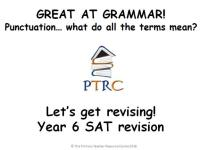 Great at Grammar - Punctuation Multiple Choice Quiz and Activty SATs Revision Powerpoint