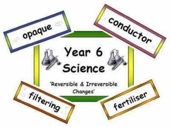 Year 6 Primary Science Vocabulary (Old Curriculum)