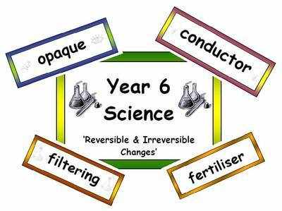Year 6 Primary Science Vocabulary