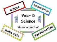 Year 5 Primary Science Vocabulary (Old Curriculum)