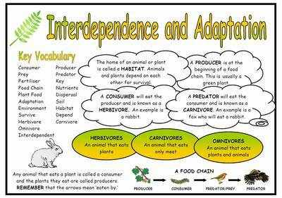 Interdependence and Adaptation Science Fact Mat
