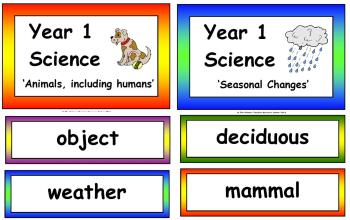 Year 1 Science Vocabulary Cards