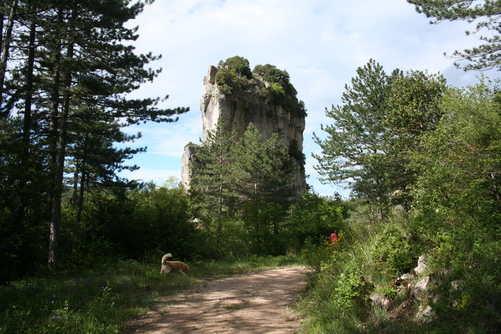 Roque de leglise