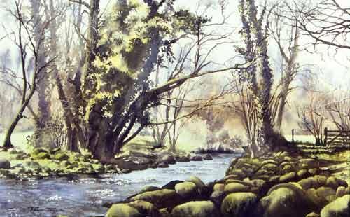 RP021 Spring Morning, River Teign