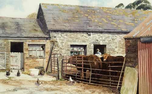 RP031 Evening Chores, Pentre Farm Cwmystwyth