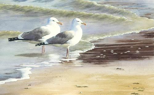 RP054 The Beachcombers