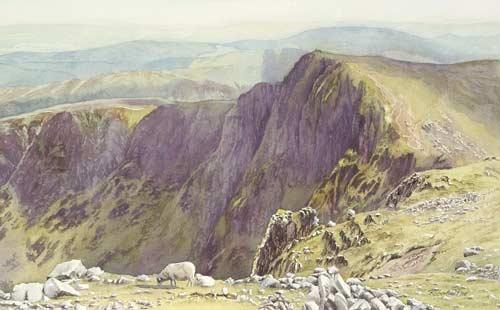 RP055 Craig Cwm Amarch, Cadair Idris
