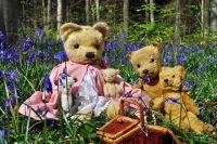Vintage & Antique Bears