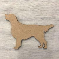 Dog  - Labrador Golden retriever 2