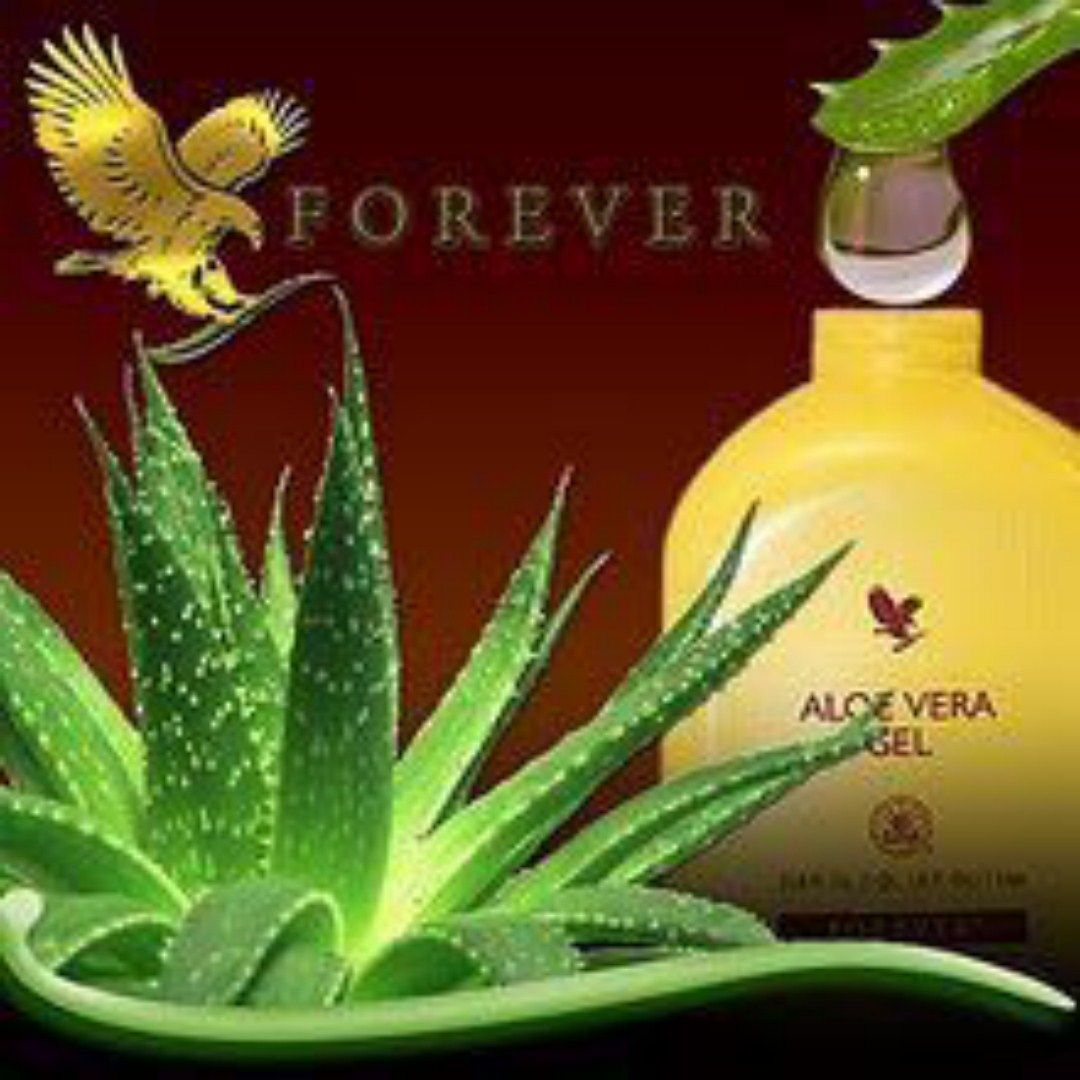 aloe gel [HDTV (1080)] (1)