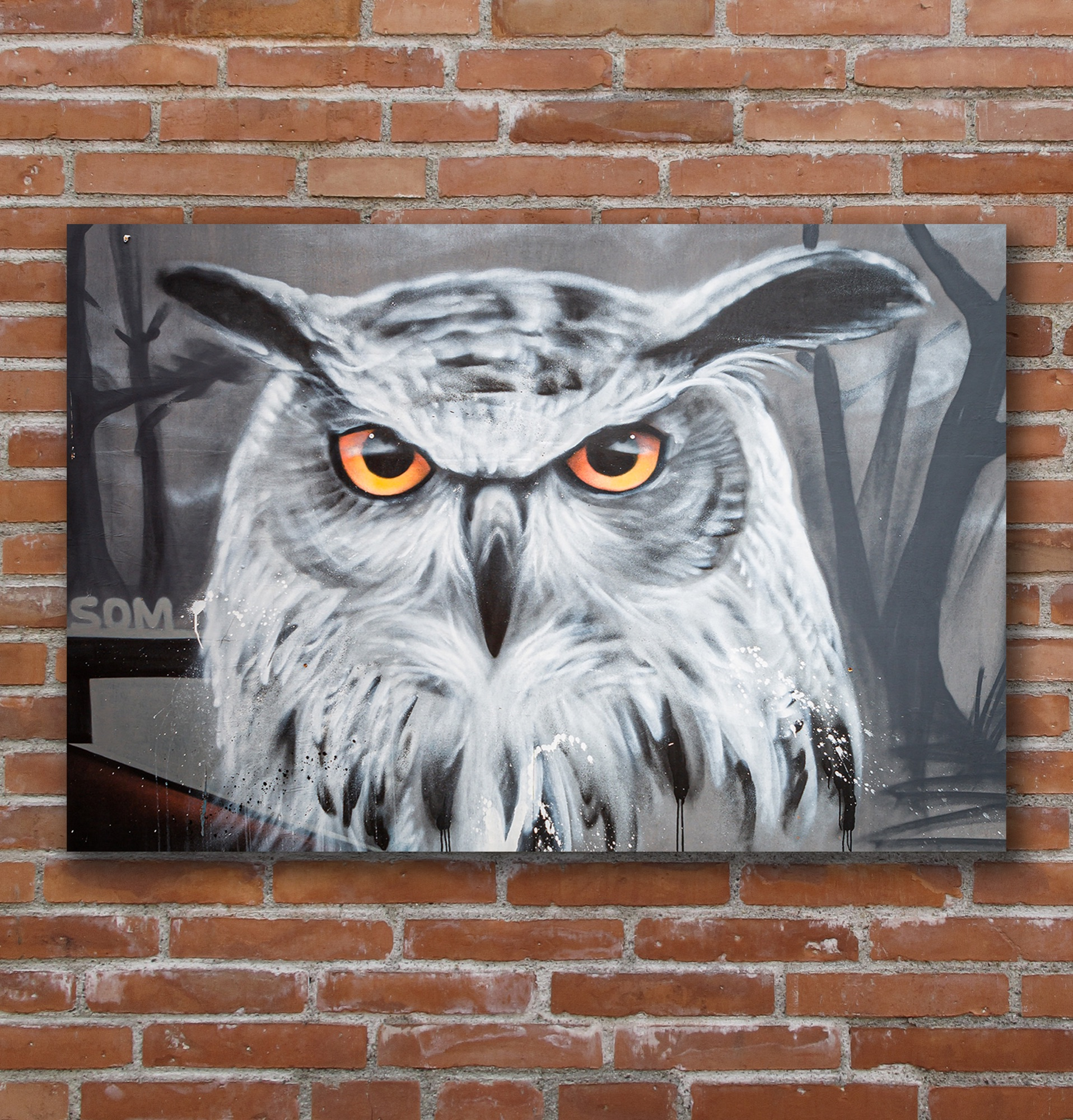 Graffiti image of tawny owl with orange eyes.